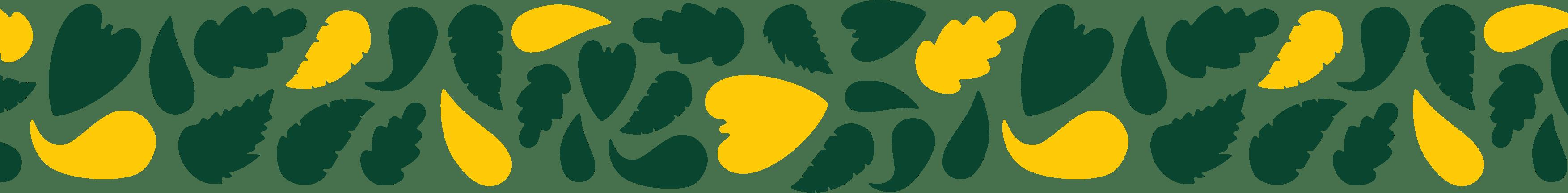 okrasný pruh, Zahrada Petr Šmach, Bzenec