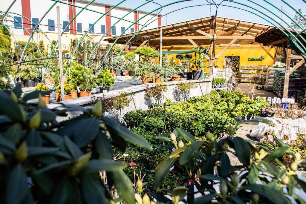 zahradnictví Zahrada Petr Šmach, Bzenec